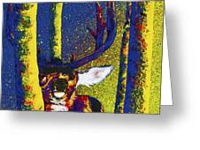 Rainbow Rut Greeting Card