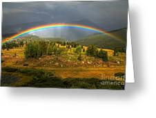 Rainbow Through The Forest Greeting Card