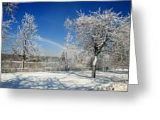 Rainbows Of Ice Greeting Card