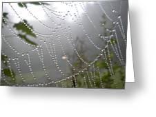 Raindrop Pearls In Fog Greeting Card