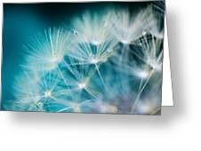 Raindrops On Dandelion Sea Blue Greeting Card