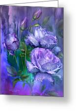 Raindrops On Lavender Roses Greeting Card
