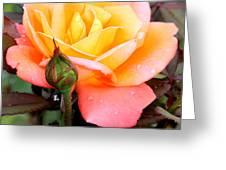 Raindrops On My Love Greeting Card