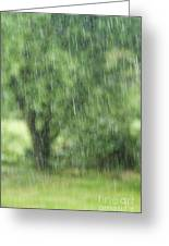 Rainfall Greeting Card