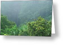 Rainforest And Lower Puohokamoa Falls Maui Hawaii Greeting Card