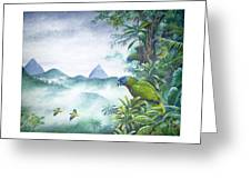 Rainforest Realm - St. Lucia Parrots Greeting Card