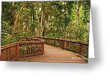 Rainforest Walkway Greeting Card