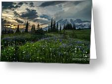 Rainier Abundance Of Flowers Greeting Card