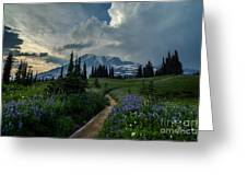 Rainier Meadows Thunder Skies Greeting Card