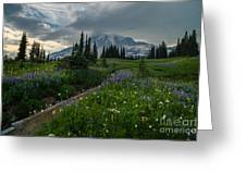 Rainier Meadows Wandering Greeting Card
