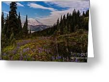 Rainier Tipsoo Wildflowers Greeting Card