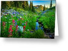 Rainier Wildflower Creek Greeting Card