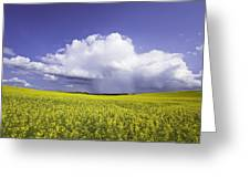 Rainstorm Over Canola Field Crop Greeting Card by Ken Gillespie