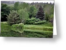Rainy Day At The Pond Greeting Card