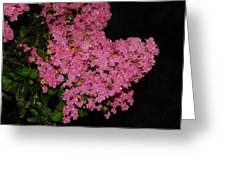 Rainy Day Blooms Greeting Card