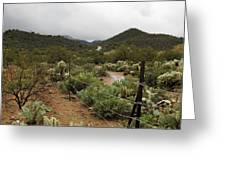 Rainy Desert Greeting Card