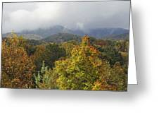 Rainy Fall Day In The Mountains Greeting Card
