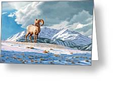 Ram And Electric Peak Greeting Card