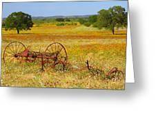 Ranch And Wildflowers And Old Implement 2am-110547 Greeting Card