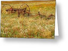 Ranch And Wildflowers And Old Implement 2am-110546 Greeting Card