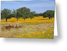 Ranch And Wildflowers And Old Implement 2am-110556 Greeting Card