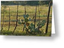 Ranch Cactus Greeting Card