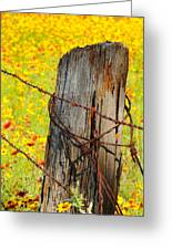 Ranch Wildflowers And Fence 2am-110532 Greeting Card