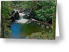 Rancheria Falls-yt Greeting Card