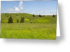 Rangelands Of Custer State Park Greeting Card