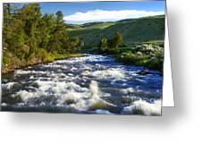 Rapids In Yellowstone Greeting Card