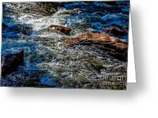 Rapids On The Gore Greeting Card
