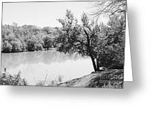 Rappahannock Riverbank I Greeting Card