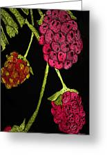 Raspberry Fabric Greeting Card