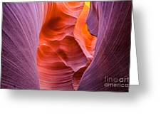 Rattlesnake Canyon Greeting Card