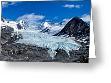 Raven Glacier 2 Greeting Card