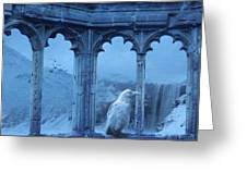 Raven Of Winter Greeting Card