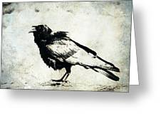 Raven On Blue Greeting Card