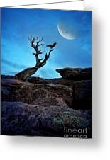 Raven On Twisted Tree With Moon Greeting Card