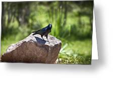 Raven Rock Greeting Card