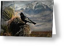 Raven Storm Greeting Card