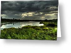 Lake Worth Sunlight Greeting Card