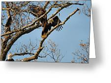 Reach For New Heights Greeting Card