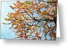 Reaching Autumn Greeting Card