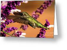 Reaching For The Nectar Greeting Card