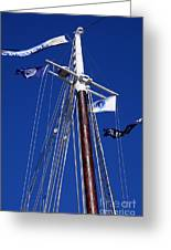Reaching Out To The Deep Blue Sky Greeting Card