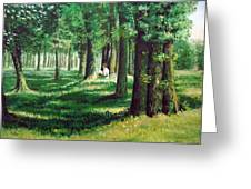 Reader In The Park Greeting Card