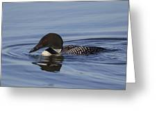 Ready To Dive Greeting Card