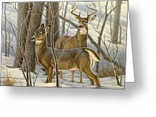 Ready - Whitetail Deer Greeting Card by Paul Krapf
