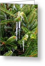 Real Christmas Icicles Greeting Card