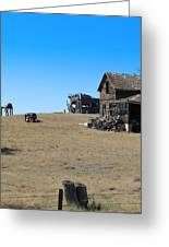 Real Estate On The Open Plain Greeting Card